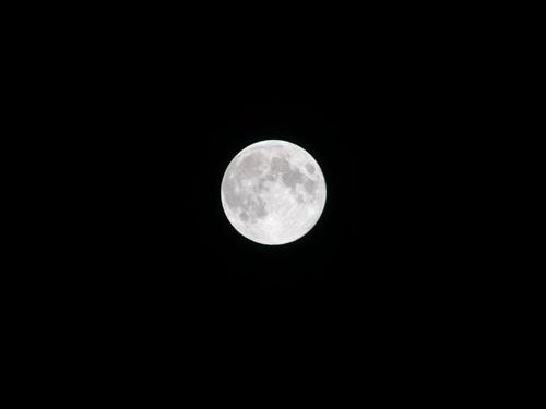 はじまりの月に